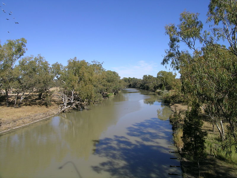 Save our River: The Case of The Disappearing Water